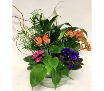 Monarch Euro Garden in Ceramic - 4 Sizes Available in Wyoming MI, Wyoming Stuyvesant Floral