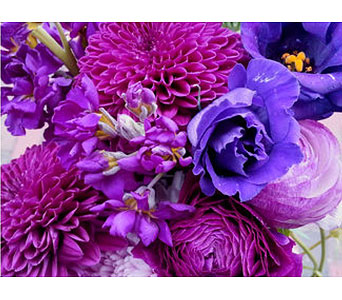 Seasonal Purple Arrangement in Needham MA, Needham Florist