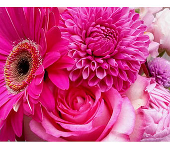 Seasonal Pink Arrangement in Needham MA, Needham Florist