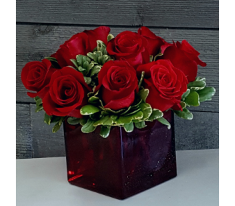 Roses Cubed in Frisco TX, Patti Ann's Flowers