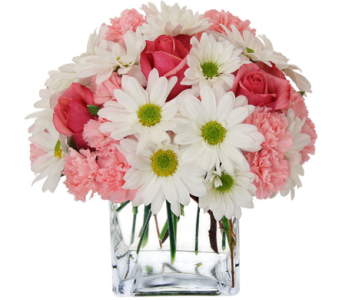 Pink and White delight in Lower Sackville NS, 4 Seasons Florist