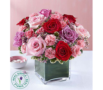 Forever Yours Rose Medley by Real Simple� in Watertown CT, Agnew Florist