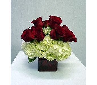 Red Cube, Hydrangeas, 9 red roses in Albertville AL, The Flower Market