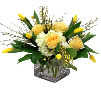 In Bloom in Detroit and St. Clair Shores MI, Conner Park Florist