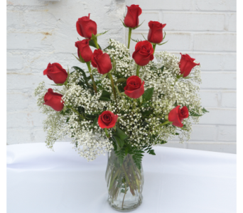 Dozen Red with Babies Breath in Zeeland MI, Don's Flowers & Gifts