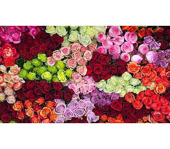You Choose in Needham MA, Needham Florist