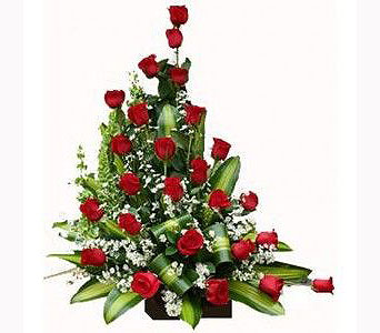 When I Say I Love You in San Antonio TX, Xpressions Florist