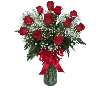 Classic Dozen Red Roses in Santa Fe NM, Barton's Flowers
