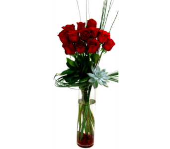 Stylized Dozen in Detroit and St. Clair Shores MI, Conner Park Florist