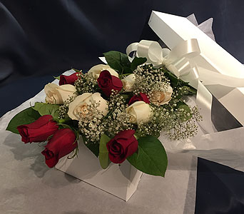 12 Mixed Red and White Roses Boxed in Markham ON, Freshland Flowers