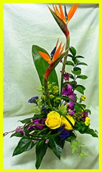 Exotic Contemporary in Hamilton ON, Joanna's Florist