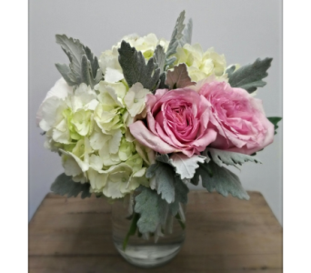 Blush & Beauty  in Etobicoke ON, Alana's Flowers & Gifts