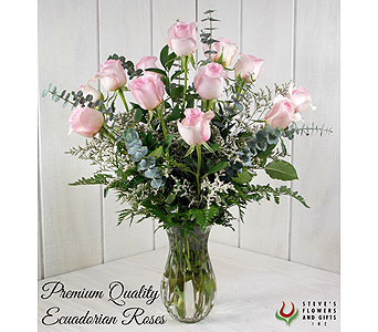 Premium Quality Pink Roses in Indianapolis IN, Steve's Flowers and Gifts