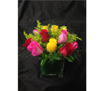 Hot Rose Cube - *New Item* in Dallas TX, Z's Florist
