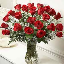 Two Dozen Red Roses in Kokomo IN, Bowden Flowers & Gifts
