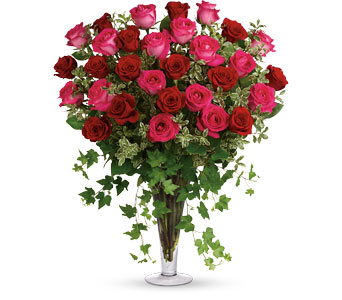 2 Dozen Long Stemmed Pink Roses in Sioux Lookout ON, Cheers! Gifts, Baskets, Balloons & Flowers