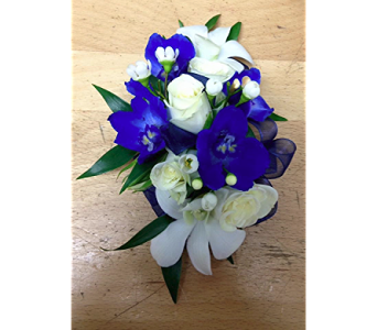 Blue Wax Orchid Wrist Corsage in Fairless Hills PA, Flowers By Jennie-Lynne