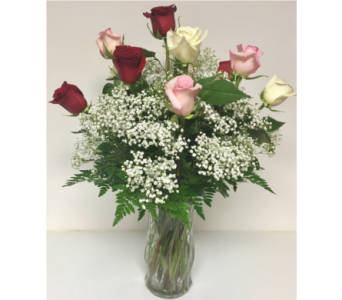 Red, Pink, and White 12 Roses with Baby's Breath in Wyoming MI, Wyoming Stuyvesant Floral