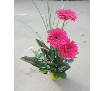 Bright & Cheery in Sioux Falls SD, Cliff Avenue Florist