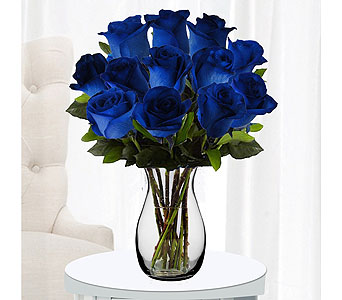 Blue Roses in Sudbury ON, Xpressions Flowers & More