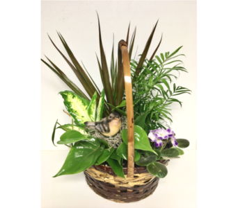 10 inch Handled Basket Planter with Resin Bird in Wyoming MI, Wyoming Stuyvesant Floral