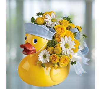 Ducky Delight - Boy in Indianapolis IN, George Thomas Florist