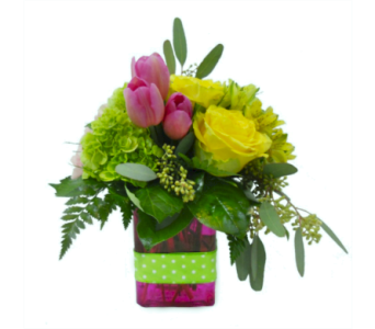Lucky Charm in Nashville TN, Emma's Flowers & Gifts, Inc.