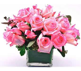 Rose Cube Pink in Spartanburg SC, A-Arrangement Florist