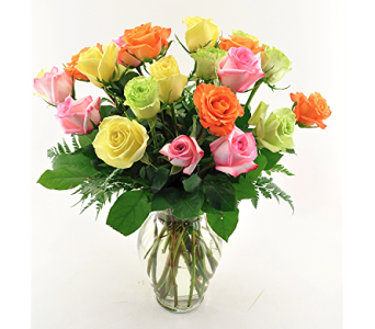 Rainbow Roses 24 in Spartanburg SC, A-Arrangement Florist