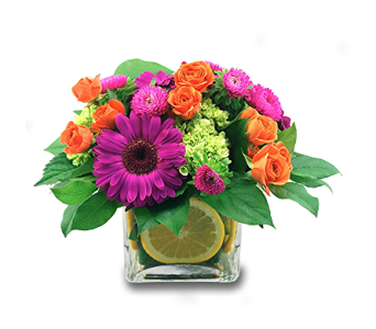 Vibrant Blossoms in Spartanburg SC, A-Arrangement Florist