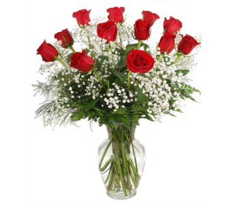 One Dozen Red Roses With Baby's Breath in Madison WI, Felly's Flowers