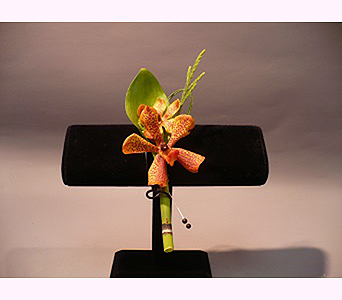 Orchid Boutonniere in San Diego CA, Mission Hills Florist