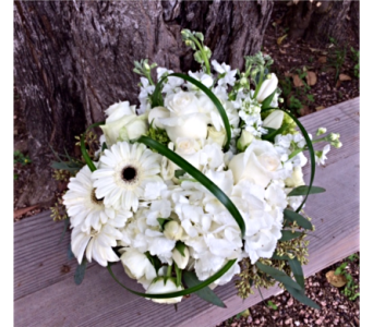 White Bliss in Boerne TX, An Empty Vase