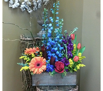 Spring is Blooming in Lawrenceville GA, Country Garden Florist