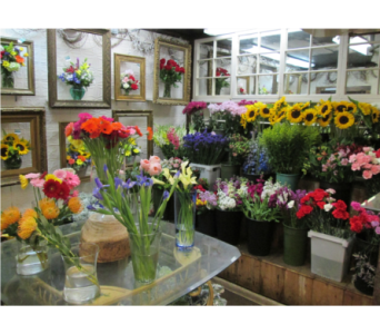 Designer's Choice in Worcester MA, Holmes Shusas Florists, Inc