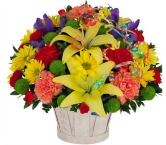 Celebration Basket in New Glasgow NS, McKean's Flowers Ltd.