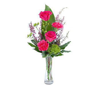Carefree in Spartanburg SC, A-Arrangement Florist