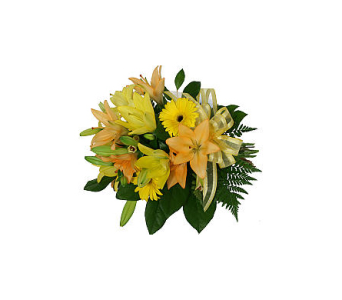 Sunshine Lilies in Markham ON, Freshland Flowers