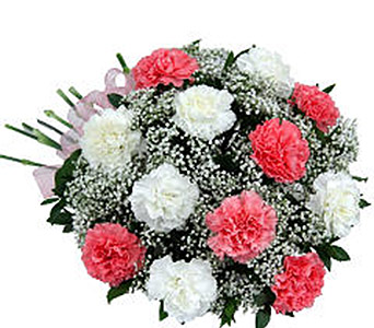 Caring Carnations in Markham ON, Freshland Flowers