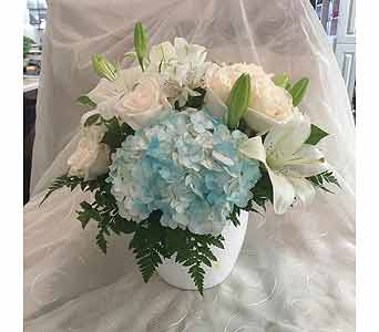Pure and Blue in Markham ON, Freshland Flowers
