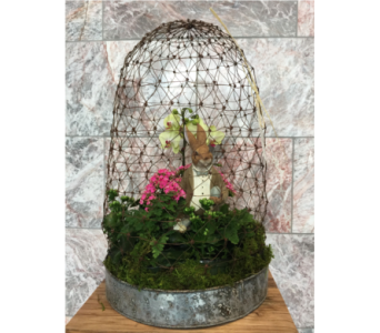 CAGED BUNNY BOUQUET  in Bellevue WA, CITY FLOWERS, INC.