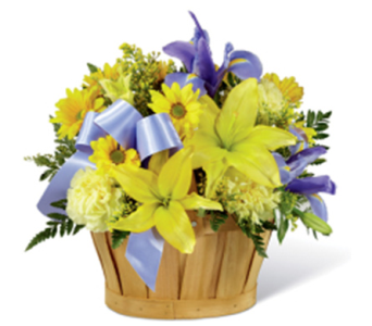 Sunshine Wishes Basket in Markham ON, Freshland Flowers