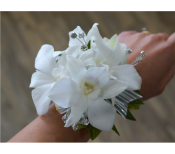 Elegant Orchid Corsage in Muskegon MI, Wasserman's Flower Shop