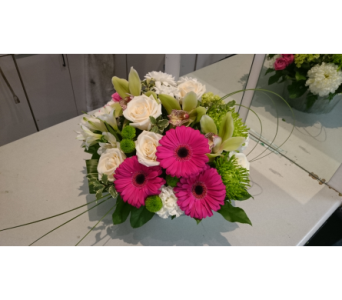 Exquisite Grace in Markham ON, Freshland Flowers