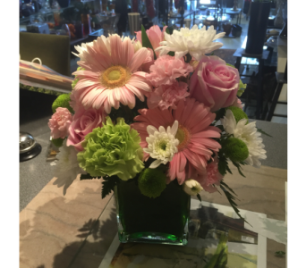 Fun and Fresh in Markham ON, Freshland Flowers