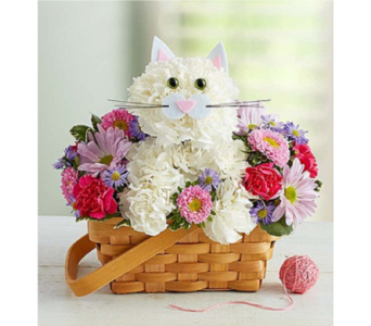 Fabulous Feline in Huntington WV, Archer's Flowers and Gallery