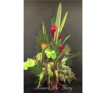 Tropical Jewels in Brentwood CA, Flowers By Gerry