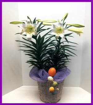 Double Your Easter Fun in Hamilton ON, Joanna's Florist