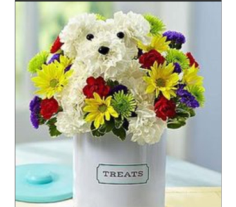 A-dog-able treat in Allentown PA, Ashley's Florist