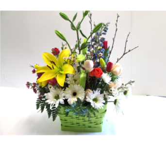 Green Spring Basket in Worcester MA, Holmes Shusas Florists, Inc